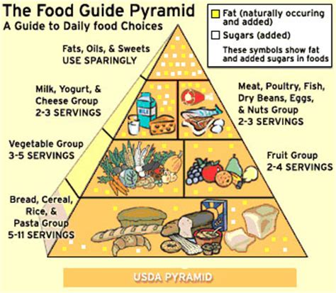 diagram of the food pyramid simple food pyramid diagram www pixshark images