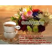 HD Beautiful Good Morning Quotes Wallpaper  Download Free