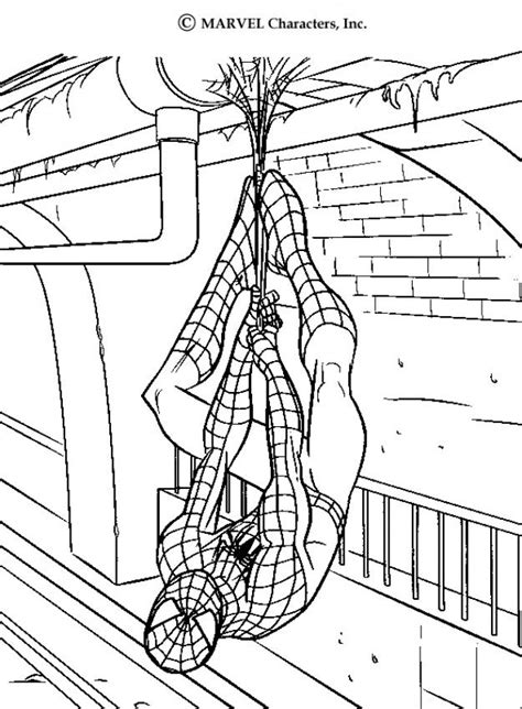 spiderman s webs coloring pages hellokids com