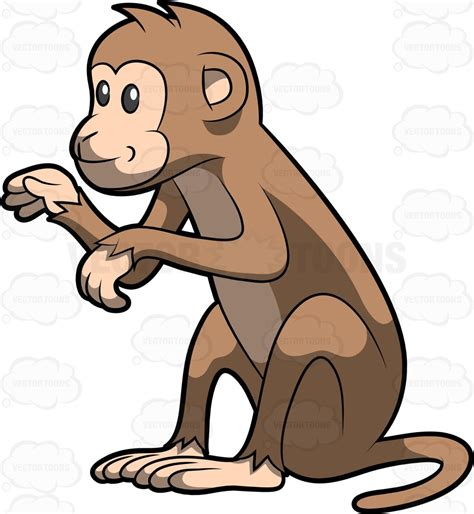 Clipart Of Monkeys Monkey Sitting Clipart 20 Free Cliparts Images