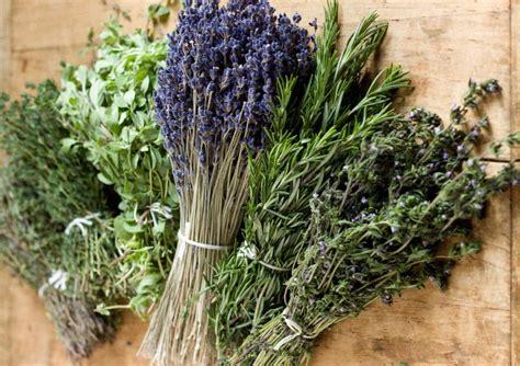 Les Herbes De Provence by 4 Astuces Pour 233 Liminer Les Odeurs De Tabac Froid Maison