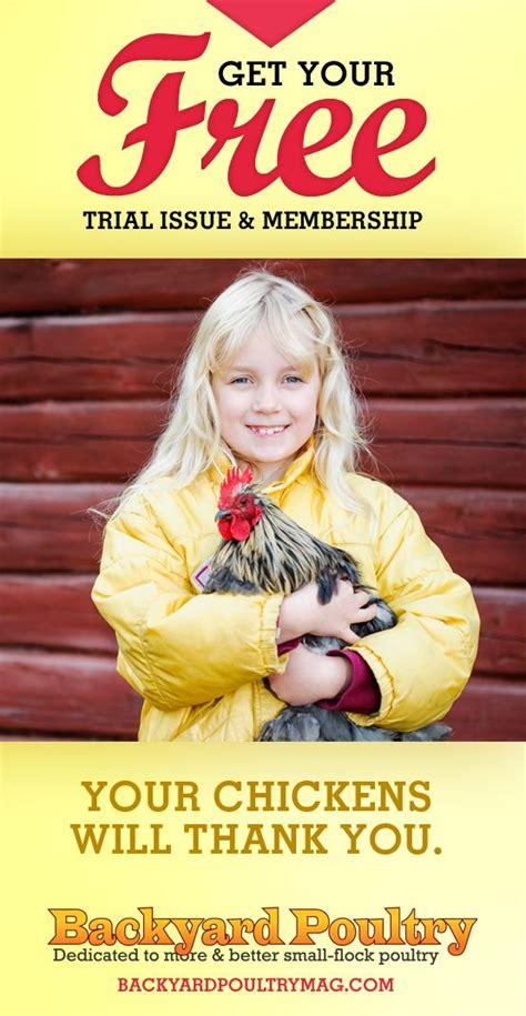 backyard poultry magazine backyard poultry poultry and