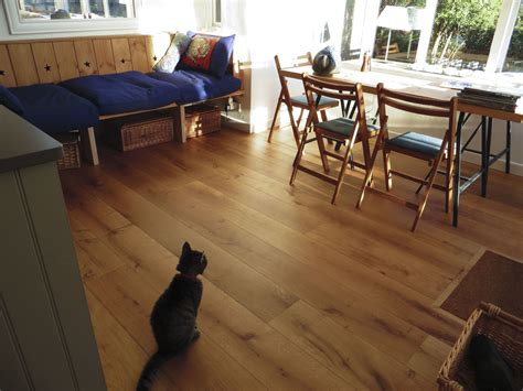 looking after wood flooring with pets