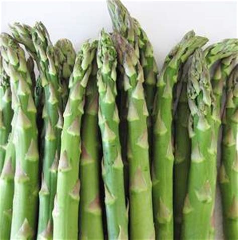 Shelf Of Green Beans by Asparagus How Does Last Shelf Expiration D And How To Store Green Beans Frozen
