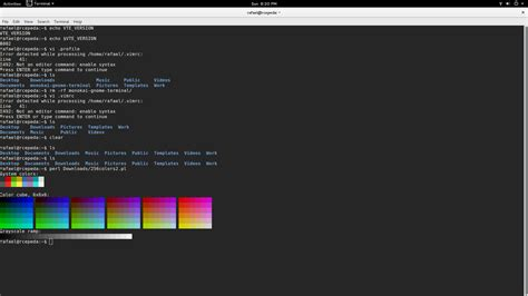gnome console ubuntu gnome terminal colors not displaying correctly