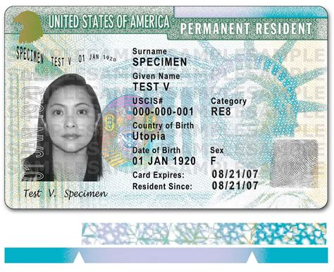 green card template for 500 000 buys a us green card dosmagazine