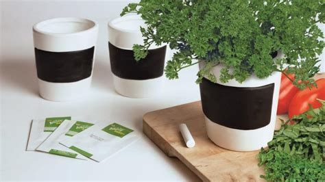 grow herbs in kitchen how to grow a herb garden in a unit