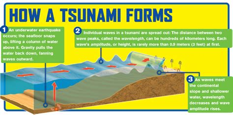 a diagram of a tsunami tsunami diagram scholastic news scholastic