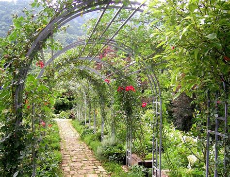 flower tunnel 17 best images about flower tunnels on pinterest gardens wisteria and walkways