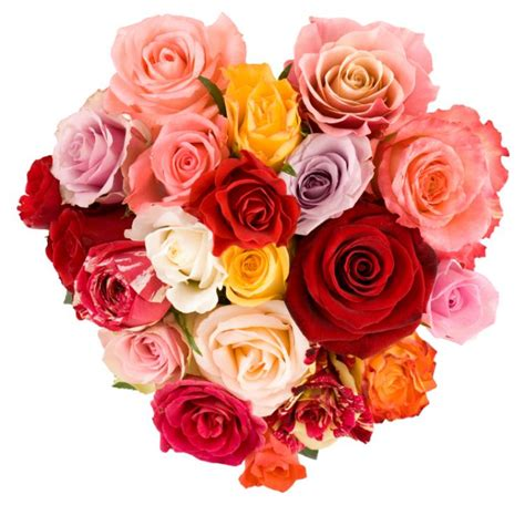 Valentines Day Roses That Speak To You by S Day In The United States
