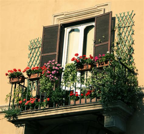 balcony flowers flowers on balconies