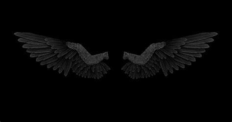 wings background picture of wings impremedia net