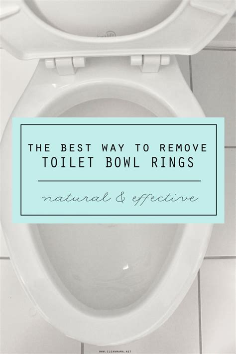 water ring toilet bowl the best way to remove toilet bowl rings clean mama