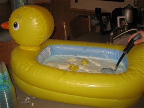 Rubber Ducky Bathtub by Rubber Ducky Photos Images Bloguez