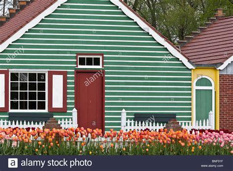Haus Kaufen Usa Michigan by Niederl 228 Ndische Festival Tulpe Veldheer Tulpe G 228 Rten