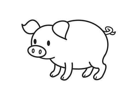 free coloring pages of cute p cute pig