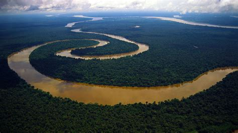amazon amazon amazon river river in brazil thousand wonders