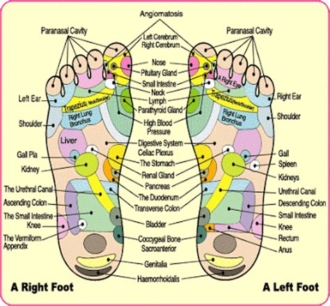 Foot Ionic Detox Dr Azimuth by Living With Pancreatitis Diagnosing Pancreatitis