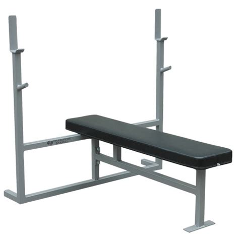 bench press standards chion standard bench press
