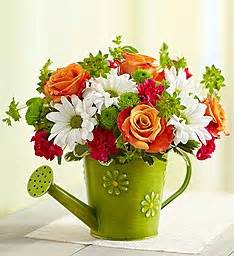 1800 Flowers Store - flowers flower delivery fresh flowers online 1 800