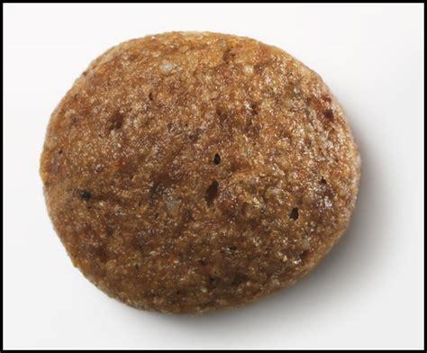 puppy kibble iams puppy kibble ingredients kibbled wheat bread recipe cherie kibble smith