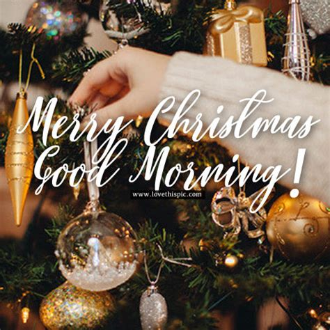 ornament merry christmas good morning pictures   images  facebook tumblr