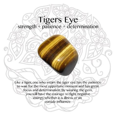 meaning of tiger eye tigers eye meaning www imgkid the image kid