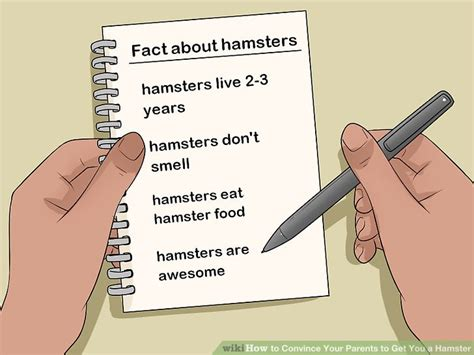 how to your to get you a how to convince your parents to get you a hamster 14 steps