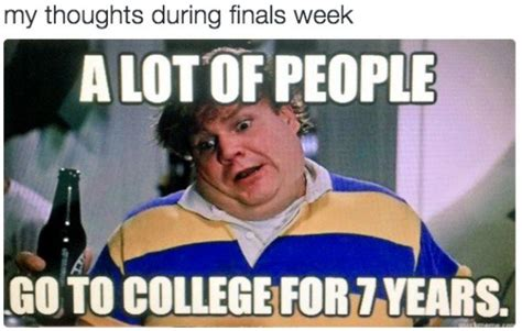 college memes to get through finals week 31 photos