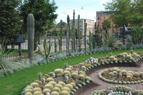 imagenes de jardines con cactus jardin de cactus ideas para creaciones impresionantes