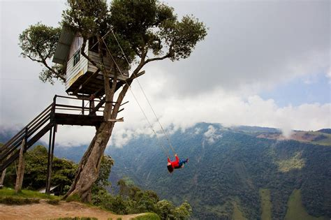swings   world   insanely pretty