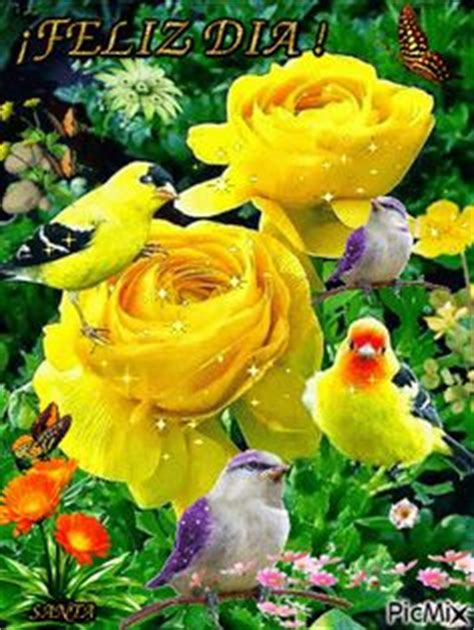imagenes de mujeres good morning imagenes con movimiento de rosas y corazones imagenes y