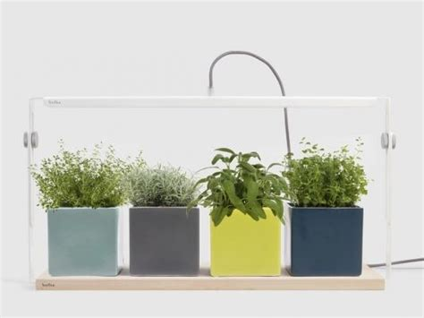illuminazione artificiale illuminazione artificiale piante