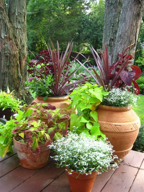 Rock Gardens Search Results Container Gardening Rock Garden With Potted Plants