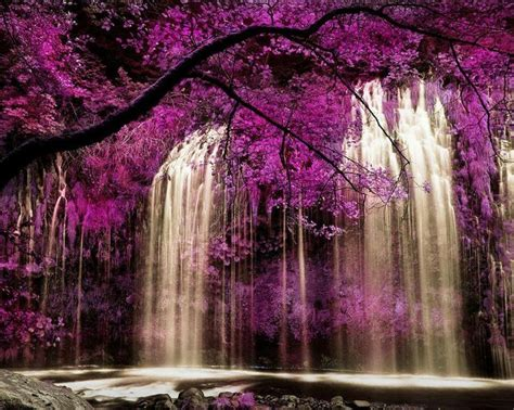 beautiful waterfalls with flowers flowers and waterfalls wonderful sights pinterest