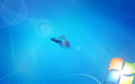 Live Wallpaper For Windows Vista Free | free live wallpaper for windows 7 wallpapersafari