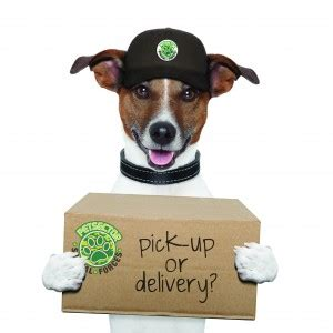 puppy delivery service petsector pet feed supply delivery pet supply and services