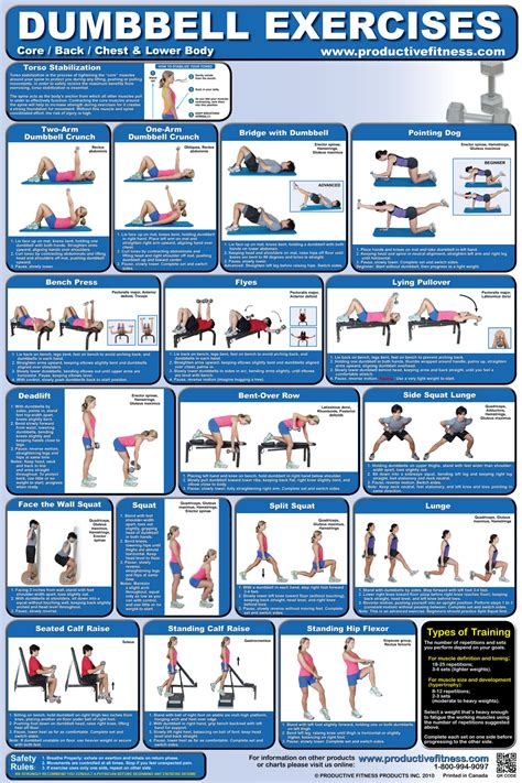 dumbbell workout chart pdf eoua