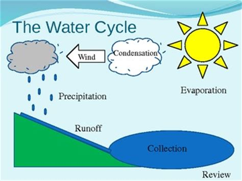 water cycle diagram water cycle diagram interactive powerpoint possibly for