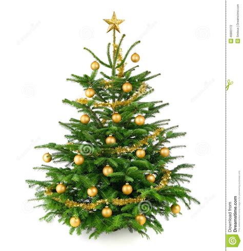 beautiful christmas tree with gold baubles stock photo