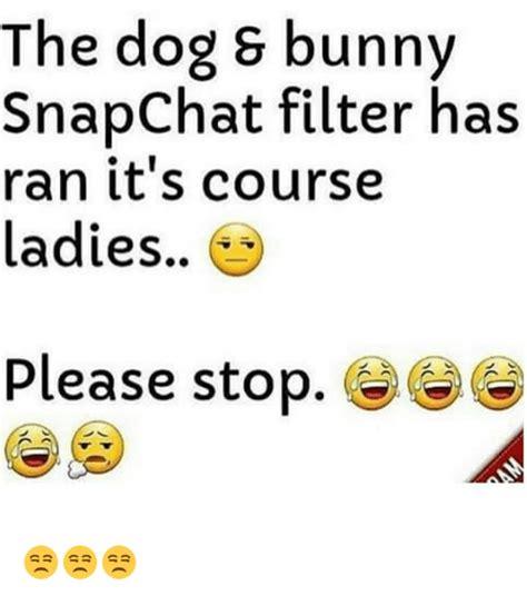 dog  bunny snapchat filter  ran   ladies