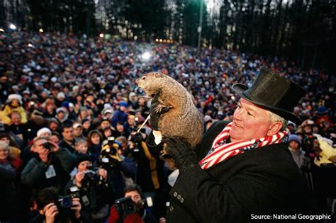 united groundhog day groundhog day 2014 phil sees shadow 6 more weeks of