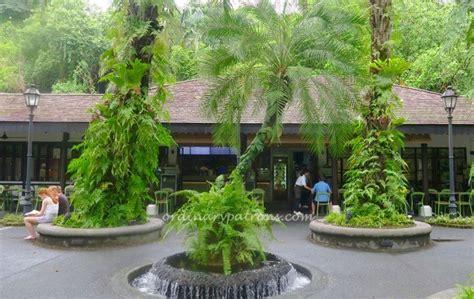 casa verde singapore laksa at casa verde singapore botanic gardens the