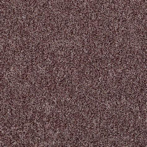 home decorators carpet home decorators collection carpet sle starlight in