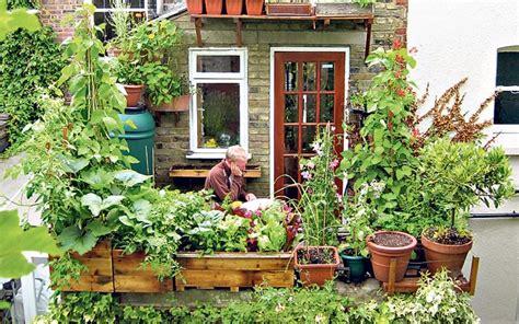 urban gardening    green   city telegraph
