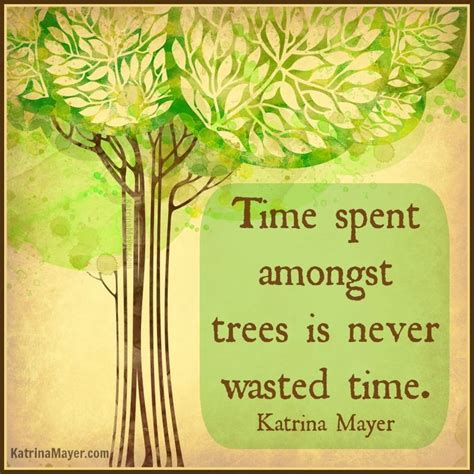 tree quote 1000 tree quotes on giving tree quotes