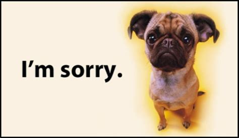 pug ecards free i m sorry ecard email free personalized and sorry cards