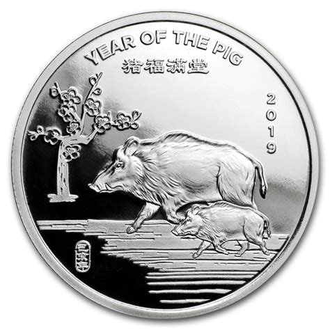 1 oz year of the silver bar 999 1 2 oz silver 2019 year of the pig 999 10