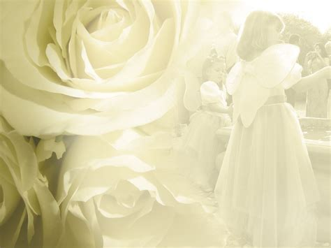 Free Download Wedding Flower Backgrounds And Wallpapers Part 2 Ppt Garden Powerpoint Wedding Slideshow