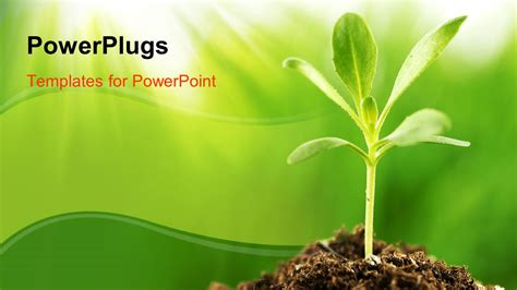 plants themes for powerpoint 2007 free download powerpoint template young green plant growing in sunshine